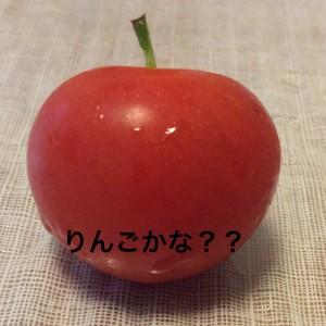 りんご@摂理hiroko