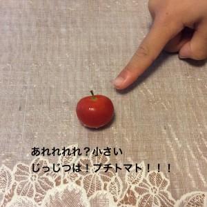 じつは@摂理hiroko