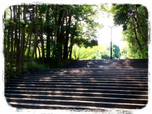 横浜国立大学正門付近